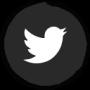 Twitter Button Josh Website